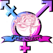 Erie Sisters Transgender Support Group new website