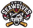 Erie Seawolves logo