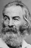 National Gay History Project - Week 4 - Walt Whitman: Poet, chronicler of war