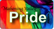 Mahoning Valley Pride Center  Picnic August 28